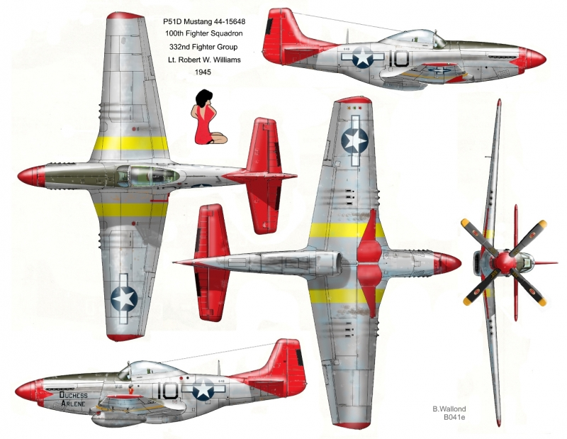 B041e-Duchess-Arlene-P51D-Mustang-5-view-Website.jpg