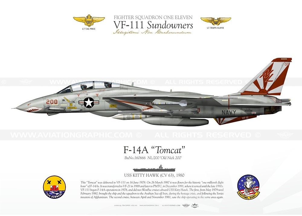 f-14a-tomcat-vf-111-sundowners-tc-024.jpg